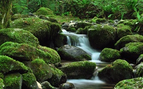 Picture greens, stream, stones, waterfall