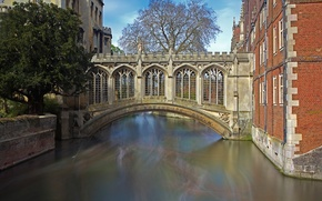 Picture bridge, England, Cambridge