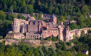 Picture the view from the top, castle, Germany, trees, forest, Heidelberg Castle