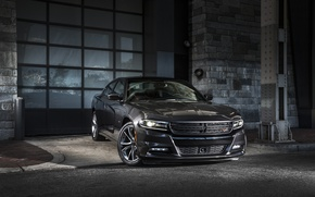 Picture Dodge, Charger, R/T, 2014, Road & Track