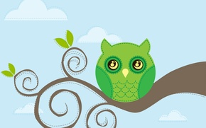 Picture branch, the sky, bird, owl