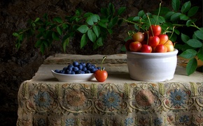 Picture berries, table, branch, blueberries, still life, cherry, tablecloth