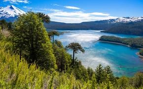 Picture Nature, Mountains, Grass, Lake, Trees, Park, Landscape, Chile, Conguillio National Park