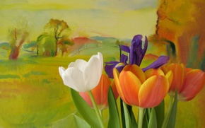 Picture flowers, style, background, tulips