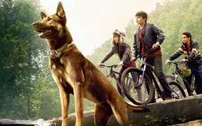 Picture cinema, girl, forest, puppy, bike, trees, dog, rocks, boy, waterfall, movie, stones, film, Max, pearls, …