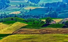 Picture roof, grass, trees, house, hills, field