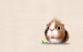Picture background, art, Guinea pig, children's, syd hanson