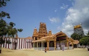 Picture nature, Sri lanka, thanujan, thanujan thanabalasingam, thanujan_t, thanujan13