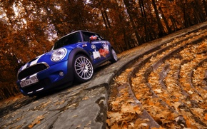 Wallpaper Autumn, Trees, Leaves, Ladder, Mini Cooper
