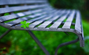 Picture macro, bench, background, widescreen, Wallpaper, leaf, shop, wallpaper, leaf, bench, widescreen, background, full screen, HD …