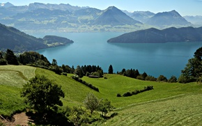 Picture mountains, lake, field, Switzerland, meadows, Lake Lucerne