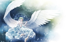 Picture circles, wings, angel, petals, lies, white, braids, Angel, magic