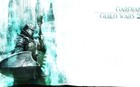 Picture armor, white background, helmet, shield, coat of arms, Guild Wars 2, Gardian