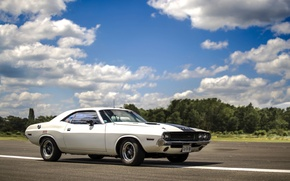 Picture Dodge, Challenger, white, '1970