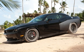 Picture Dodge, palm trees, Fast and furious 5, the film, beach, SRT, Challenger