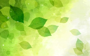 Picture leaves, nature, vector