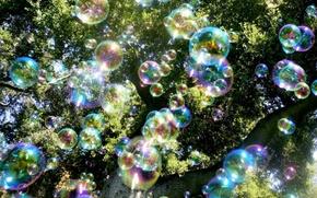 Picture the sun, landscape, bubbles, Sunny, magically
