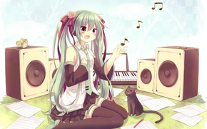 Picture cat, speakers, Vocaloid, miku hatsune, Miku Hatsune, vocaliod