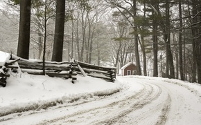 Picture winter, road, forest, house