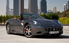 Picture trees, grey, background, Ferrari, CA, Ferrari, supercar, California