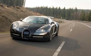 Wallpaper bugatti, veyron, mansory