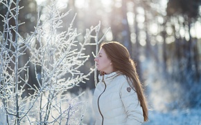 Picture winter, girl, snow, portrait, morning