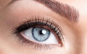 Wallpaper blue, eye, eyebrows, pupil