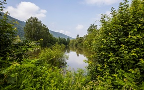 Picture greens, forest, summer, trees, mountains, pond, Germany, Nehren