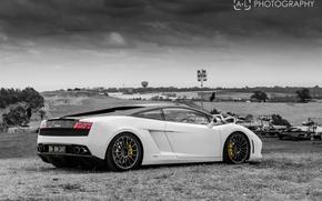 Picture black and white, white, white, gallardo, lamborghini, Lamborghini, lp560-4