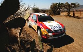 Picture Auto, Sport, Machine, Citroen, The hood, Day, Citroen, Lights, WRC, Rally, The front, Xsara