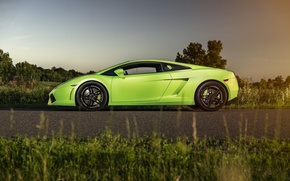Picture Lamborghini, Gallardo, Green, Sun, Turbo, Supercar, LP560-4, Twin