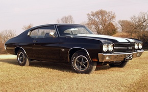 Picture the sky, grass, trees, black, coupe, Chevrolet, Chevrolet, Coupe, 1970, the front, Chevelle, Muscle car, …