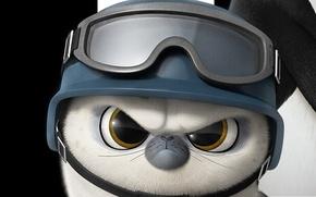 Picture white, black, seal, soldier, bird, spy, feathers, cartoon, animal, cute, warrior, fur, pearls, kuwaii, penguin, …
