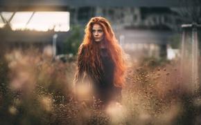 Picture redhead, Katrin, Martin Kuhn