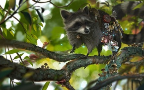 Picture branches, girl, raccoon, Shipper, Rudy Siswanto