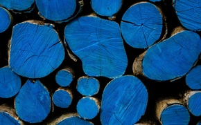 Picture background, wood, logs