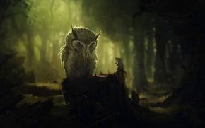 Picture forest, trees, darkness, owl, stump, mouse, the conversation