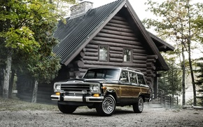Picture house, jeep, Jeep, 1987, Grand Wagoner, Grand Wagoneer