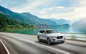Picture sea, Jaguar, Jaguar, 2015, F-Pace S