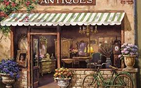 Picture flowers, old, bike, Picture, shop, painting, flowerbed, bike, shop, flowers, old, Antiques, painting, shop, antique, …