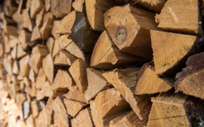 Picture macro, wood, stack, woodpile