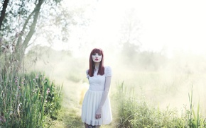 Picture nature, redhead, Morning mist