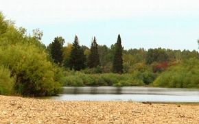 Picture sand, forest, summer, River, taiga