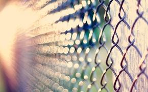 Picture macro, light, glare, mesh, bokeh, netting