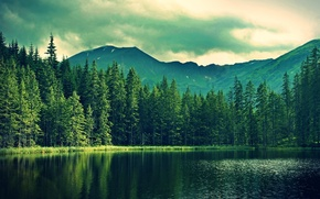 Picture forest, mountains, nature, lake, overcast, fishing, beautiful