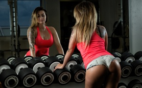 Picture Dumbbells, Gym, Weight