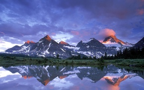 Picture trees, Lake, Canada, Mount Assiniboine