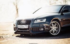 Picture machine, auto, Audi, Audi, photographer, before, drives, auto, photography, photographer, Thirteen, Mark Litovkin, A5 Coupe
