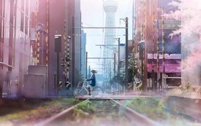 Picture bike, schoolgirl, wire, art, home, anime, the city, girl, Sakura, tanaka ryosuke