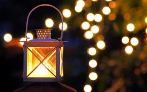 Picture light, night, lights, the evening, flashlight, bokeh